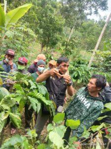 Dinas Pertanian Palupi