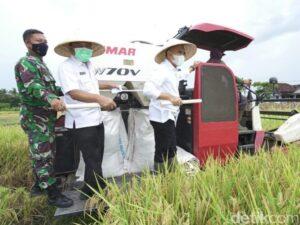 bupati-anas-sebut-kinerja-pertanian-padi-banyuwangi-lampaui-target_43