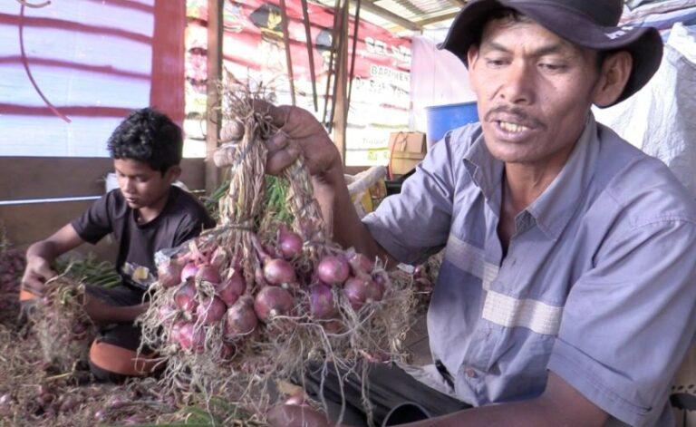 kementerian-pertanian-kementan-terus-berupaya-melakukan-pe-73