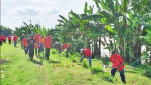 pengurus-dpc-pdi-perjuangan-kabupaten-tuban-tanam-pohon-di-sungai-bengawan-solo