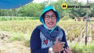 BBPP Ketindan Upaya Peningkatan Produksi Padi di Kabupaten Blitar