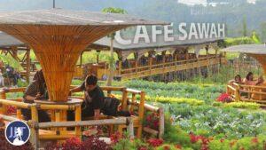 Elok Nan Asri Cafe Sawah Pujon Kidul 2021