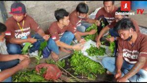 Pelatihan Tematik Mewujudkan Bali Goo Organik