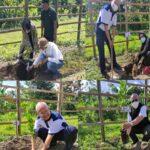 Para Pejabat Kementerian Pertanian Tanam Jeruk Bentuk Apresiasi Kinerja Petani Jeruk JIFSI